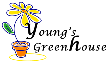Young's Greenhouse